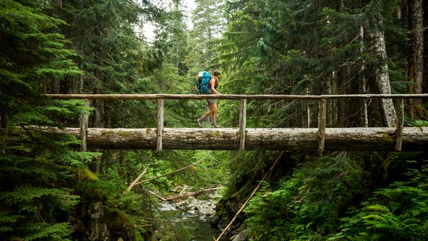 Hiking, camping and running will likely become even more popular post Covid-19 (Credit: Credit: Jordan Siemens/Getty Images)